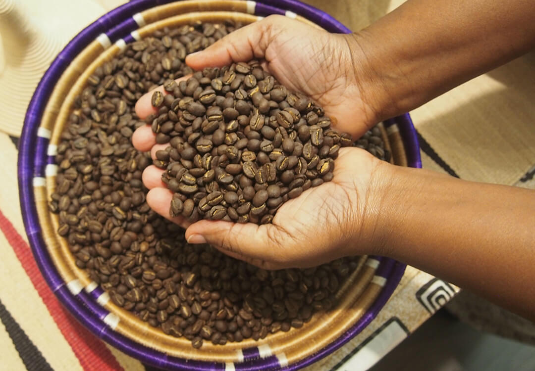 hands scoop coffee beans