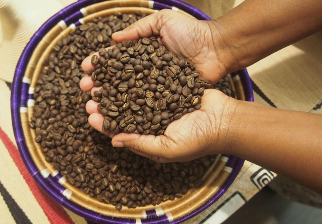 hands scoop coffee beans